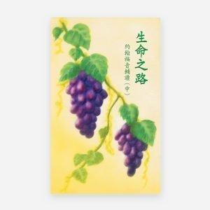 生命之路──約翰福音輔讀(中)(電子書)