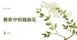 雅歌中的鳳仙花